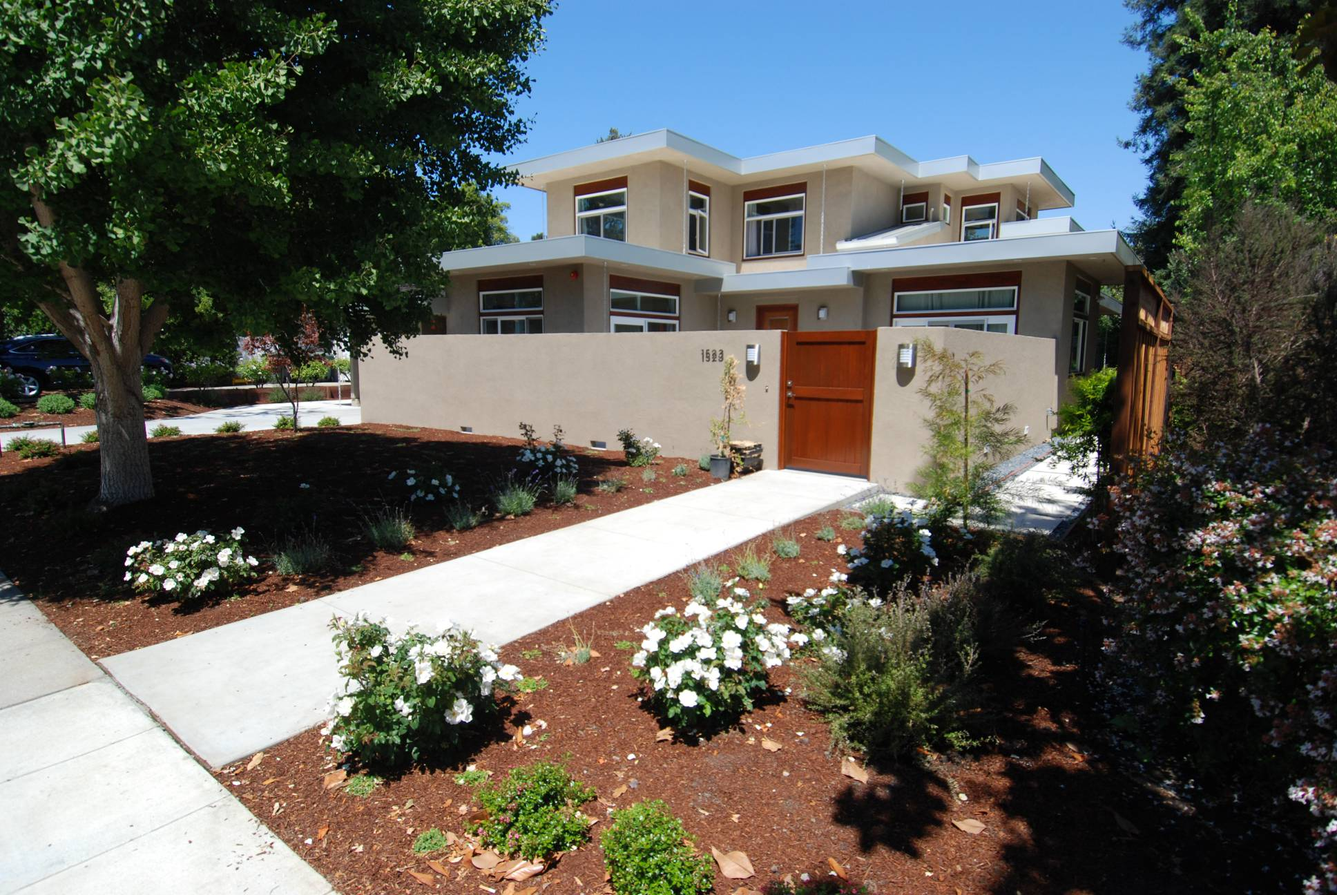 Modern exterior frontyard, exterior work, Palo Alto